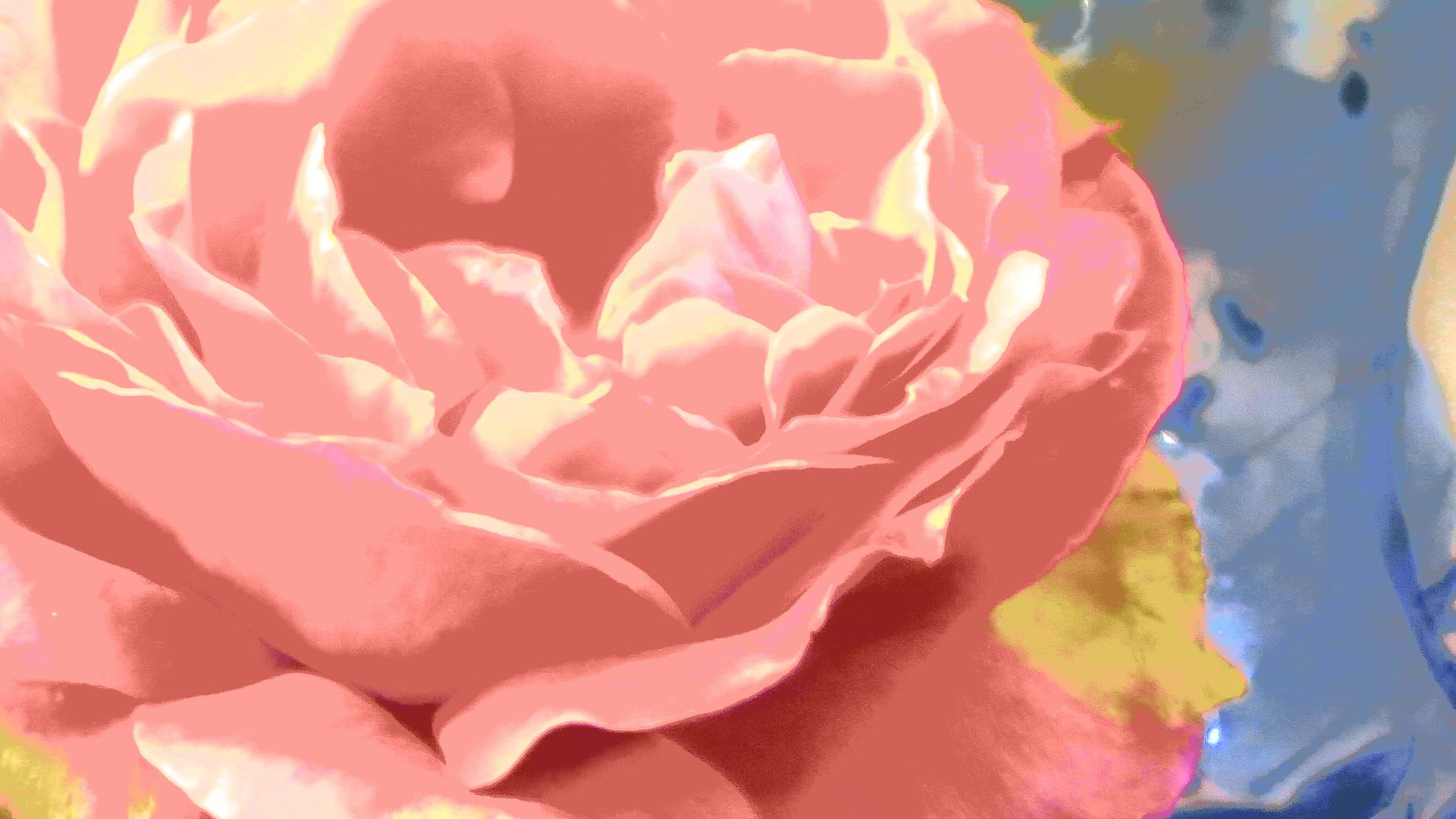 Bildschirmfoto 2020-02-04 um 15.36.43